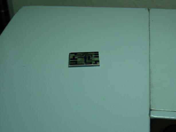 P1100505.JPG
